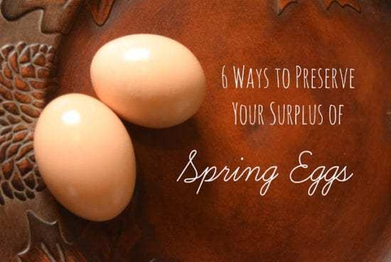 Homestead Blog Hop Feature - 6 Ways to Preserve a Surplus of Spring Eggs
