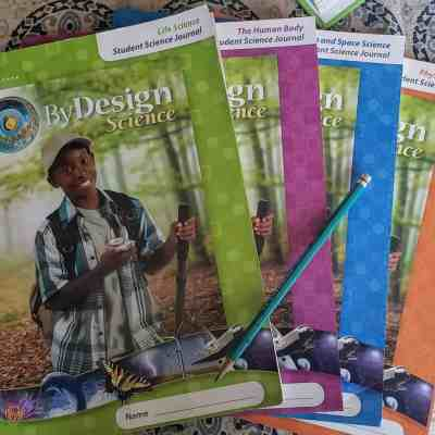 Science Curriculum for Inquisitive Kids? By Design Science May Be For You