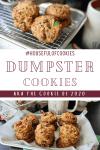 Dumpster Cookie Pinterest Image