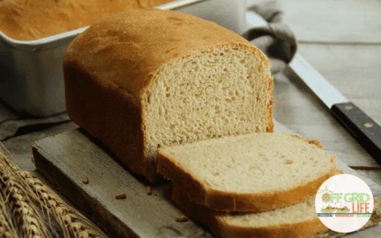 Homestead Blog Hop Feature - Homemade Sandwich Bread Recipe
