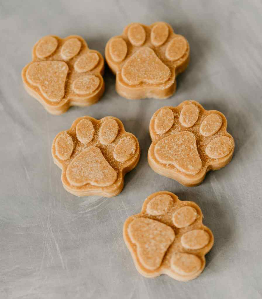 coconut oil dog treats
