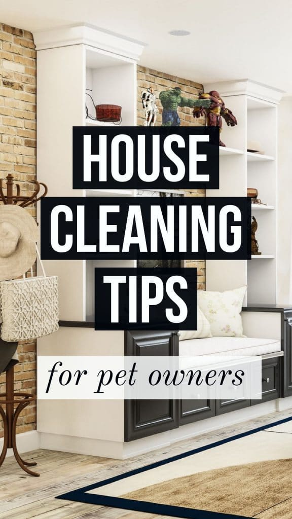 house cleaning tips for dog owners