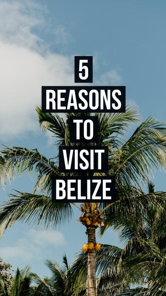 5 reasons to visit San Pedro Belize