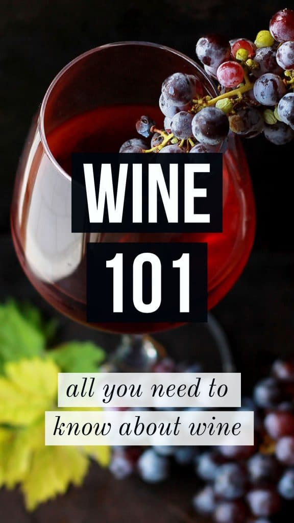 wine 101 everything you need to know about wine