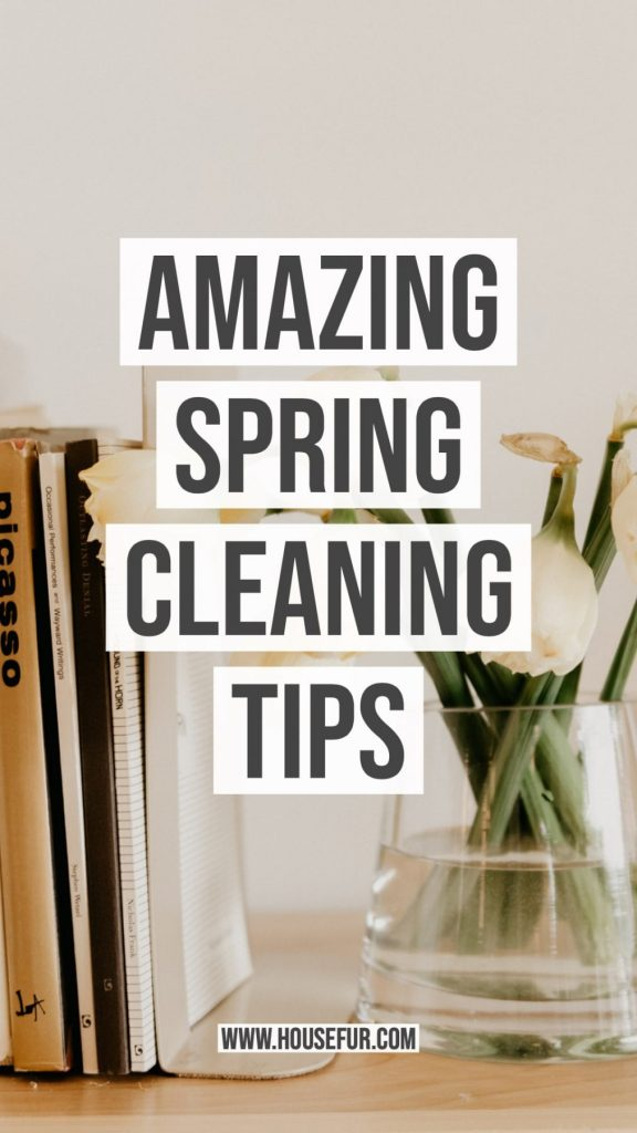 spring cleaning house tips