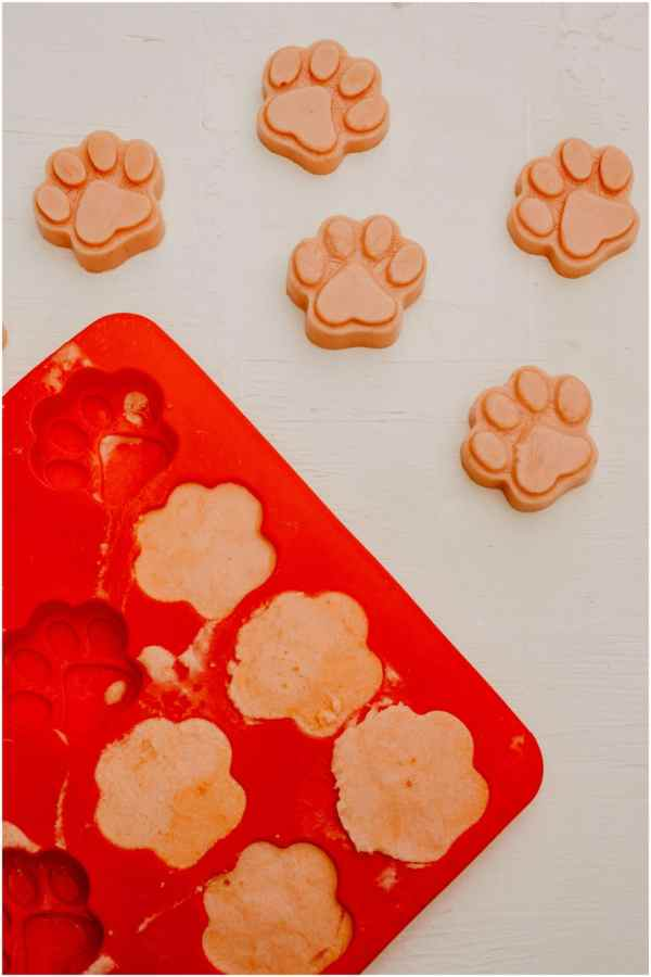 frozen watermelon dog treats