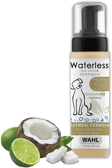 dog dry shampoo