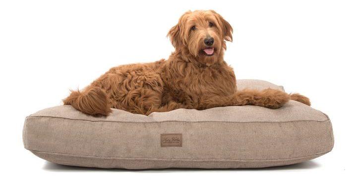 harry barker dog bed west elm