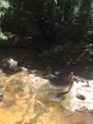 Kids frolicking at Somersby Falls.
