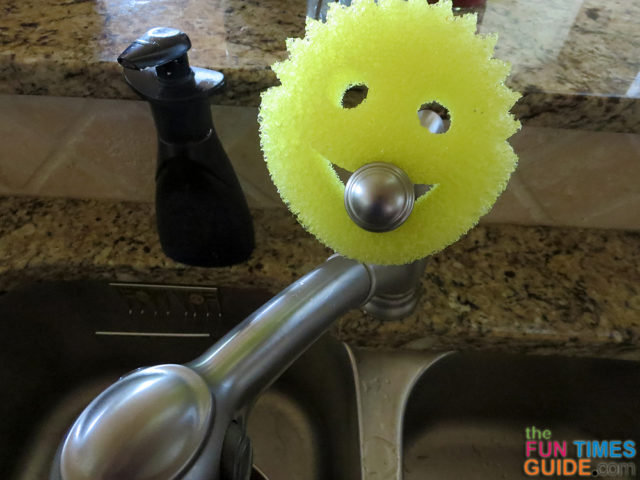 Have You Tried The Shark Tank Scrub Daddy Smiley Face