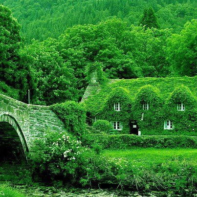 Fairytale Cottage in England - THE MOST BEAUTIFUL ENGLISH COTTAGES PICTURES STUNNING ENGLISH COUNTRY COTTAGES AND HOMES IMAGES