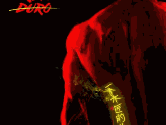 Brymo-–-Duro-Cover-art