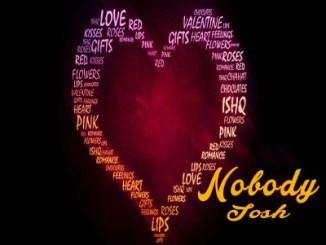 josh-nobodyweb