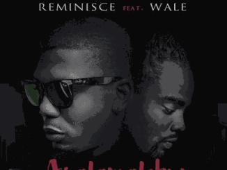 remi-wale