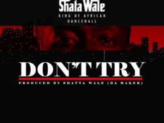 shatta-wale-–-don't-try-criss-waddle-diss