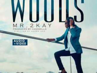 mr-2kay-woods-art
