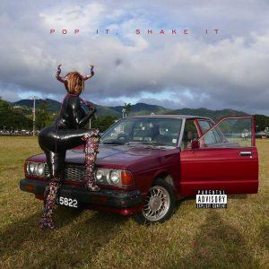 Download MP3: YG – Pop It, Shake It
