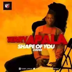 DOWNLOAD MP3: TERRY APALA – SHAPE OF YOU (ED SHEERAN COVER)