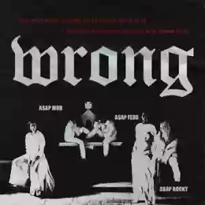 Download MP3: ASAP Rocky – Wrong Ft. ASAP Ferg
