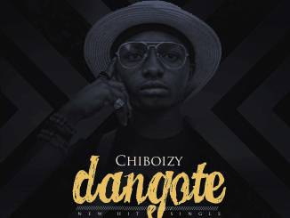 Download MP3: Chiboizy - Dangote