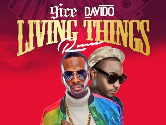 9ICE - LIVING THINGS REMIX FT DAVIDO