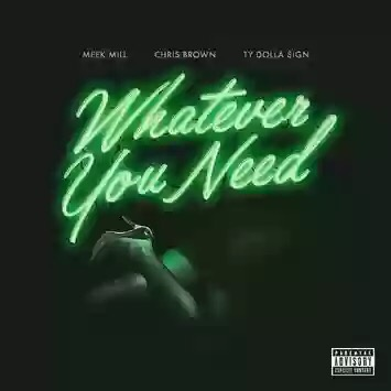 Download MP3: Meek Mill - Whatever You Need Feat. Chris Brown & Ty Dolla $ign