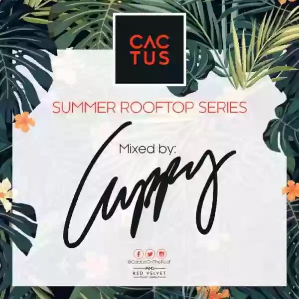 DJ CUPPY – CACTUS ON THE ROOF mp3 download