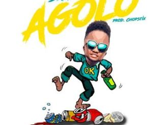 Download Skales – Agolo