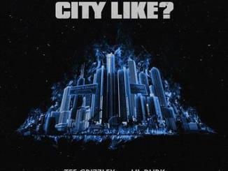 """Download Lil Durk & Tee Grizzley - """"What Yo City Like?"""""""