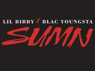 Download Lil Bibby Ft Blac Youngsta – Sumn
