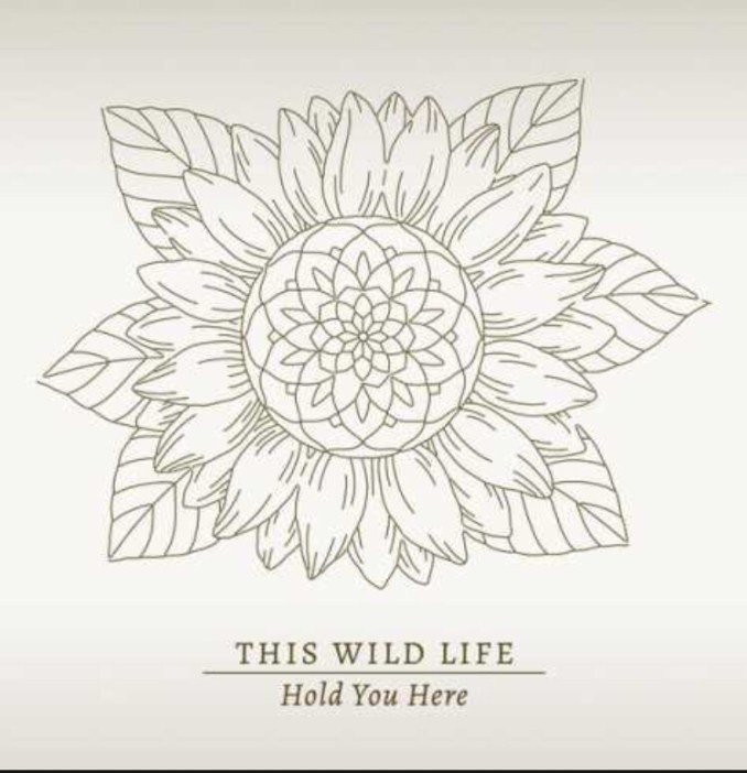 This Wild Life - Hold You Here mp3 download
