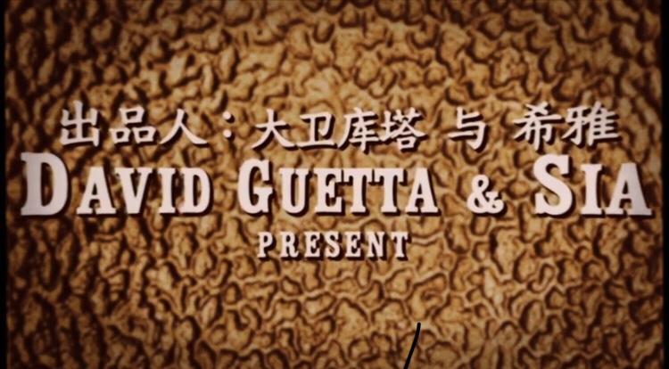 David Guetta ft. Sia - Flames (Video)
