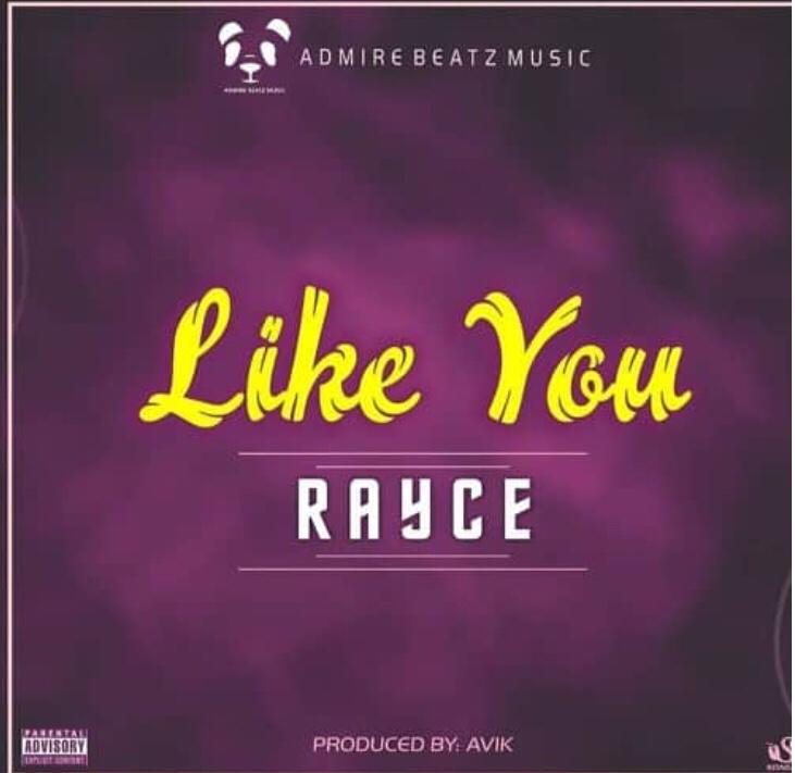 Rayce - Like You mp3 download