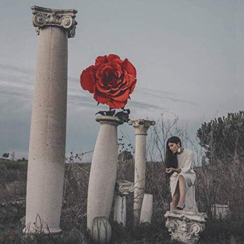 Rose Kid – Nos années tendres