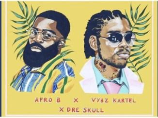 Afro B – Shape Nice Ft. Vybz Kartel & Dre Skull
