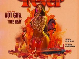 Megan Thee Stallion - Realer