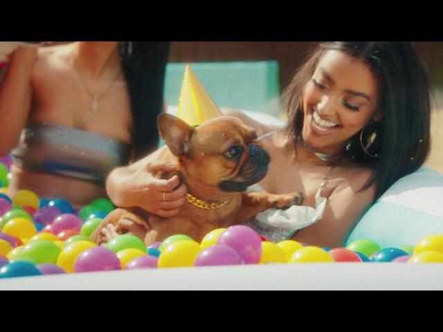 T-Pain - It's My Dog's Birthday (Video)