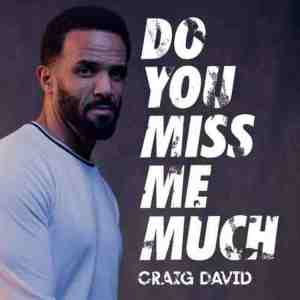 Craig David – Do You Miss Me Much