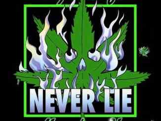 Wiz Khalifa - Never Lie ft. Moneybagg Yo