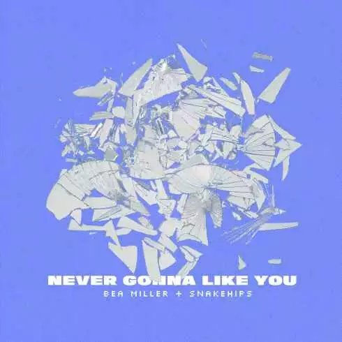 Bea Miller & Snakehips – Never Gonna Like You (feat. Snakehips) mp3 download