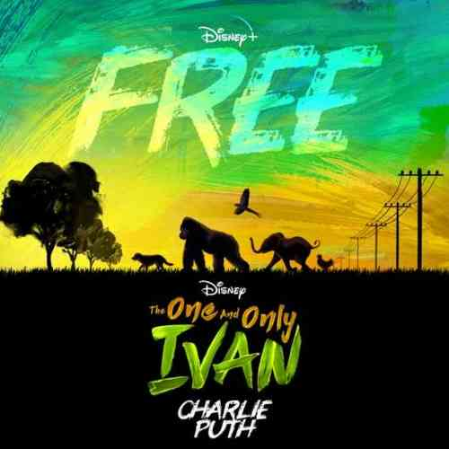 Charlie Puth – Free (download)