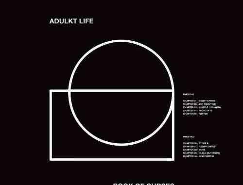 Adulkt Life – Stevie K & Taking Hits (download)