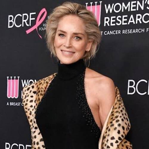 """Sharon Stone Wants To Write A Book About Her """"Dismal"""" Online Dating Experiences"""