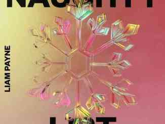 Liam Payne - Naughty List ft. Dixie D'Amelio (download)