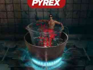 Digga D – Made In The Pyrex Album (download)