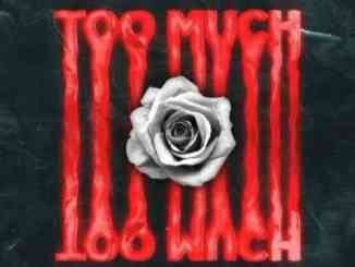 Dimitri Vegas & Like Mike, DVBBS & Roy Woods – Too Much (download)