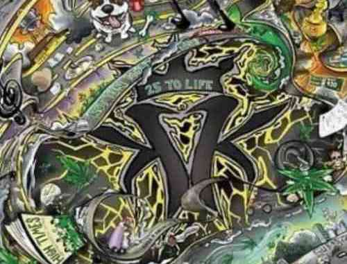 Kottonmouth Kings – 25 To Life Album (download)