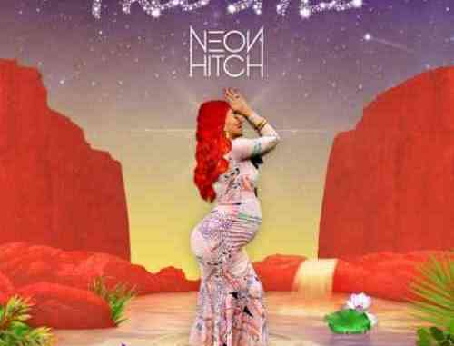 Neon Hitch – Free Style Album (download)