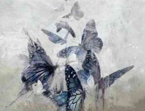 White Moth Black Butterfly – The Cost of Dreaming Album (download)