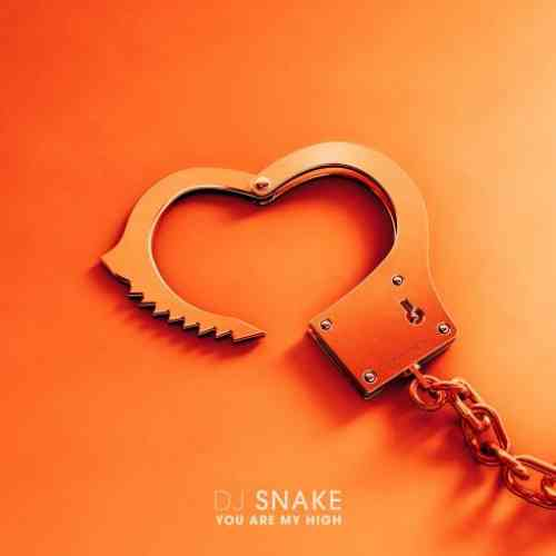 DJ Snake – You Are My High (download)